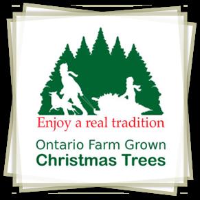 Ontario Farm Grown Chrismas Trees