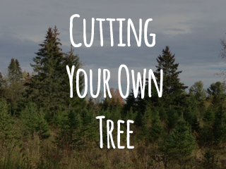 Cutting Your Own Tree